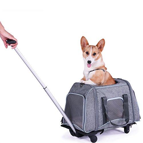 Petsfit Cochecito de Viaje para Mascotas, con 4...