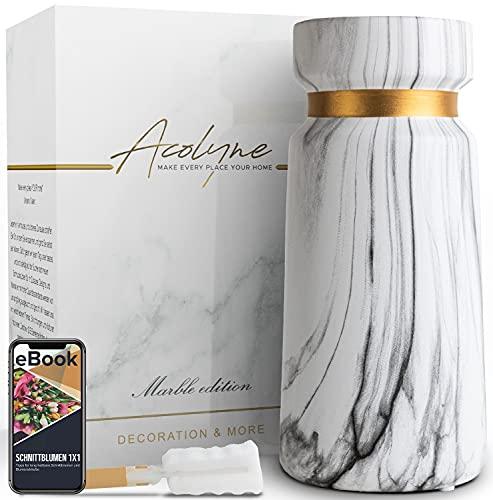 Acolyne® Premium Vase für Pampasgras aus Hochwertiger Keramik [MIT REINIGUNGSSCHWAMM & EBOOK] als Moderne Blumenvase weiß |Marmor Deko in Marmor-Optik | Weiße Vase | Vasen | Vase Weiß