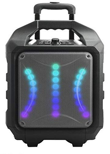 Woxter Rock'n'Roller RX - Altavoz inalámbrico transportable (Altavoz Trolley Bluetooh, Autoamplificado 80W,Display LED), negro