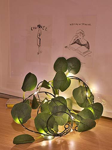 Guirnalda de luces LED de eucalipto artificial para dejar la vida, guirnalda de hiedra falsa para plantas, cadena de luces (2 m/20 luces, hojas de eucalipto)