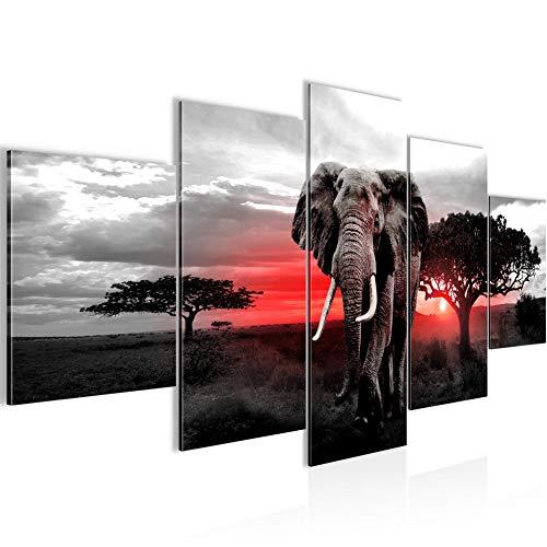 Bilder Afrika Elefant Wandbild 200 x 100 cm Vlies - Leinwand Bild XXL Format Wandbilder Wohnzimmer Wohnung Deko Kunstdrucke Rot Grau 5 Teilig - MADE IN GERMANY - Fertig zum Aufhängen 001251b