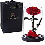 JTTVO Rose eternelle sous Cloche Rose enchantée la Belle et la bete idee Cadeau Fete des Meres Femme Anniversaire Saint Valentin (Red-9')