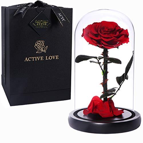 sieJTTVO Die Schöne und das Biest Rosen im Glas konservierte echte Rosen besondere Geschenke für Frauen Jahrestag Geschenk für sie Muttertag(Red)