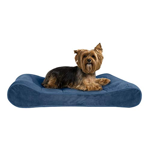 Furhaven Pet Dog Bed - Orthopedic Micro Velvet Ergonomic Luxe Lounger Cradle Mattress Contour Pet Bed with Removable Cover for Dogs and Cats, Stellar Blue, Medium