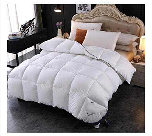 cyxb Soft and Hypoallergenic Duvet Insert,winter warm quilts duvet insert blanket filler heavy goose down comforter king queen Twin Size-white_200*230cm/79 * 91'/5.5LB