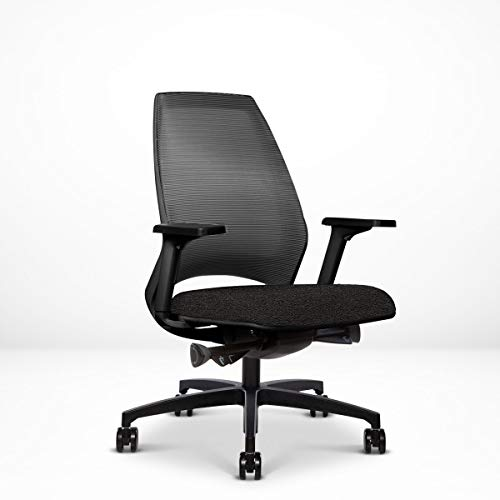 4U Ergonomic Chair, Home or Office Desk Chair, Slim 4-Way Resilient Mesh Back, Synchronized Tilt, Sliding Seat, Adj. Arms, Built-in Natural Lumbar Curve, Contract Grade 12 Year Warranty, Black
