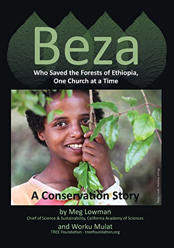 Beza, Who Saved the Forests of Ethiopia, One Church at a Time - A Conservation Story