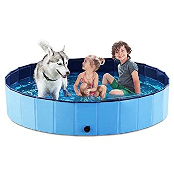 Best pet pool Reviews