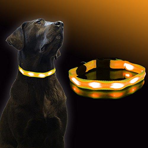 UC-Express hondenhalsband LED oranje lichthalsband hond veiligheidshalsband