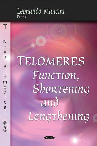 Telomeres: Function, Shortening & Lengthening