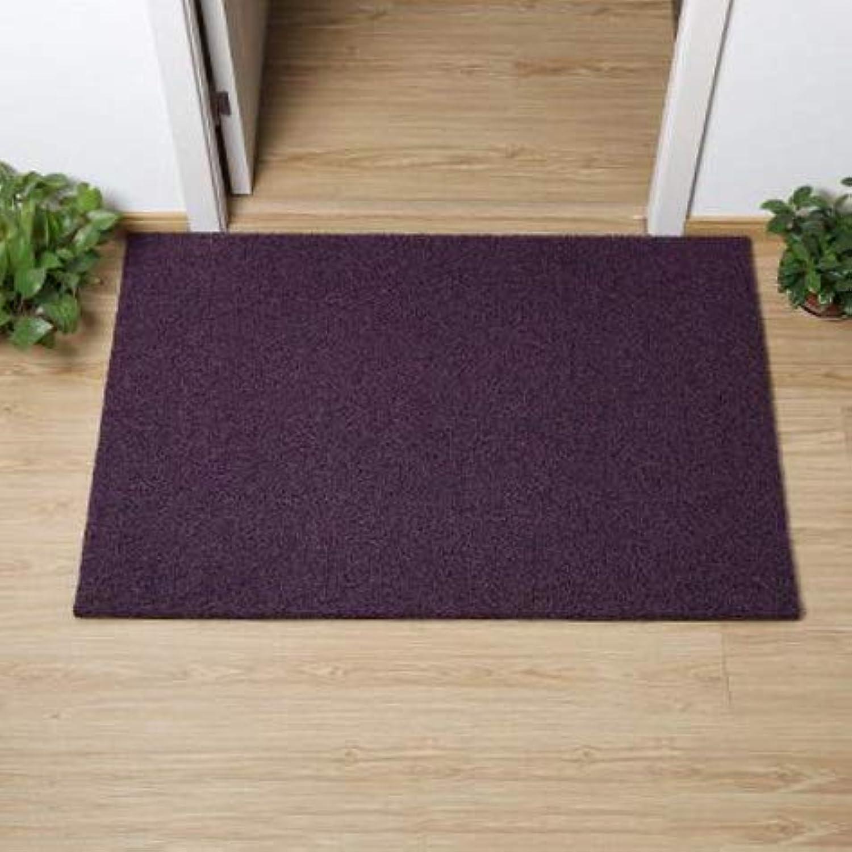 Non-Slip Door Mat, Carpet Front Door Carpet for Doorway Stairs Insole Balcony Front Door-Purple 60x80cm(24x31inch)