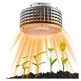 YSJJJBR Lámpara de Plantas 30 0le DS 30 0w LED Crecer Ligero Espectro Completo luz cálida phytolamp lámpara led for Plantas de Interior Cultivo Caja de Flores Bombilla (Wattage : 300W)
