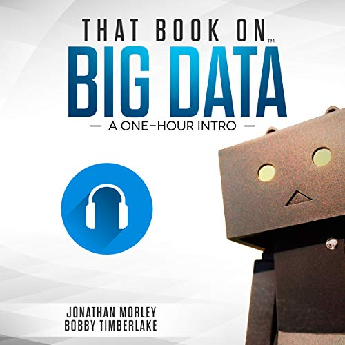 That Book on Big Data: A One-Hour Intro audiobook cover art