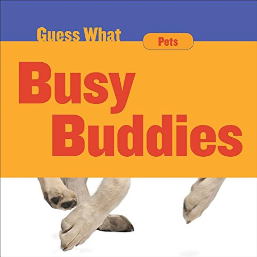 Busy Buddies: Dog (Guess What)