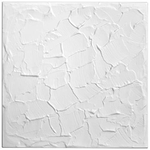 1 qm | Deckenplatten | XPS | formfest | Hexim | 50x50cm | Nr.11