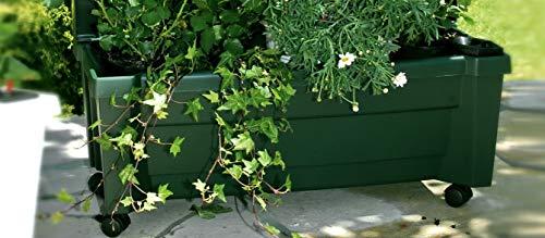 Preisvergleich Produktbild Pflanzkasten Calypso. grün. 1 Stck