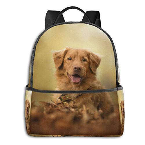 Animal Animals Depth of Field Dog Nature Nova Scotia Duck Tolling Retriever Pet Multi-Functional College Bags Students Casual Daypack Travel Backpack School Laptop Bookbags