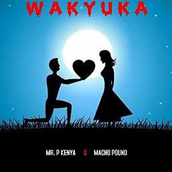 Wakyuka
