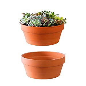 Yishang Large Terracotta Pots for Succulent – 10 Inch Cactus Plant Containers Indoor Garden Bonsai Pots with Drainage Hole – Set of 2, Unglazed Clay Ceramic Pottery Planter