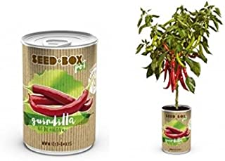 Amazon.es: 3 estrellas y más - Kits de cultivo en casa / Plantas ...