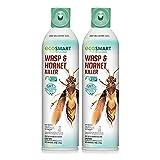 EcoSmart Wasp & Hornet Killer 14 oz. Aerosol (2 Pack)