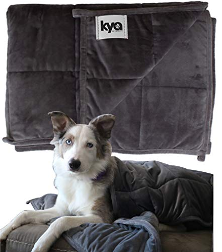 Kya Pet Products Presents Weighted Blanket for Pets, Size 48'x36'...