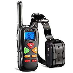 10 Best Dog Training Collars Reviews and Buyer Guide 2019
