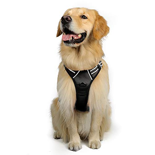 rabbitgoo Dog Harness, No-Pull Pet Harness with 2 Leash Clips, Adjustable Soft Padded Dog Vest, Reflective No-Choke Pet Oxford Vest with Easy Control Handle for Large Dogs, Black, XL