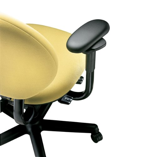 The back of Steelcase Criterion Chair
