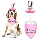 Petyoung Sombrero de Vela de Feliz Cumpleaños para Perros con Bufanda de Pañuelo para Niñas Y Niños: Atuendos Y Decoraciones Suministros de Fiesta de Cumpleaños para Mascotas