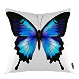 oFloral Animal Throw Pillow Cover Azure Butterfly Biology Spring Animal Wildlife Decorative Square Pillow Case...