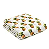 YnM Minky Weighted Blanket | 20lbs, 60''x 80'', Queen Size, Suit for One Person(~190lbs) | 2.0 Fuzzy Sensory Heavy Blanket | Ultra-Soft Minky Material with Glass Beads, Pineapple Print & Green Dots