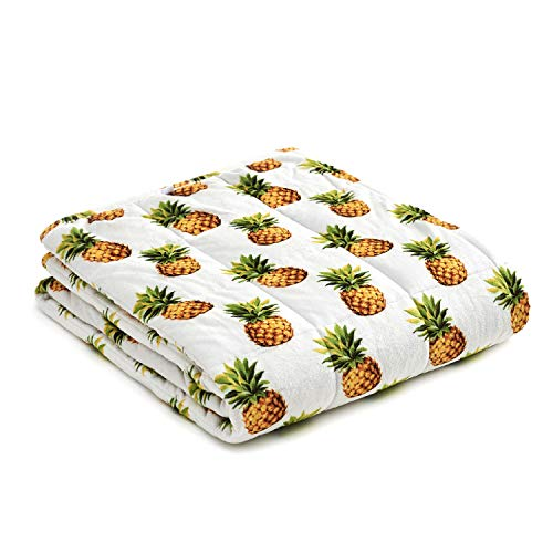 YnM Weighted Blanket — Heavy 100% Oeko-Tex Certified Minky Material with Premium Glass Beads (Pineapple, 48''x72'' 12lbs), Suit for One Person(~110lb) Use on Twin/Full Bed