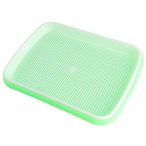 BESTOMZ Gewchshaus-Tablett für Gewchshaus Wheatgrass Ohne Boden Pflanztablett mit Wasserwanne und Frühbeetpapier grün