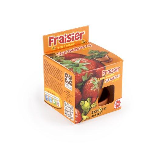Radis et Capucine Graine de Fraisier en Pot de Culture pour Enfant Multicolore 10 x 8 x 8 cm