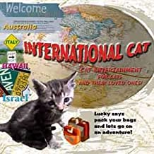 International Cat Video ~ Entertainment for cats and their loved ones