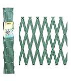 PAPILLON 8091545 Celosia PVC Verde Extensible 3x1 Metros, 3x1m