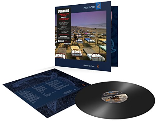 A Momentary Lapse of Reason(20 [Vinyl LP]