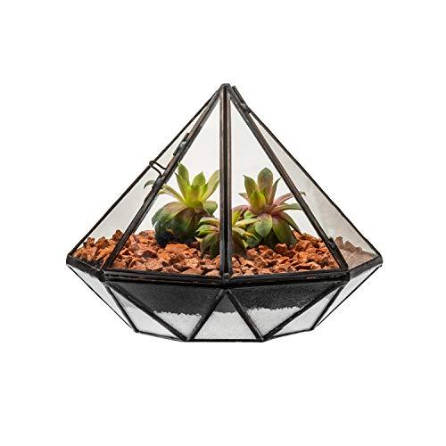Ultra Diamant 17x17x13cm Clear Glass Terrarium Planters Geometrische Form Für die Verlauten Einzigartig Herzstück Oder Windows-Shacken für Luftanlagen Fern Moss Sukkulenten im Garten