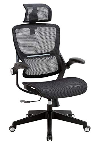 SAMOFU Office Chair Ergonomic Desk Chair Mesh Computer Chair with Adjustable Headrest Flip up Arms,Technical Task Swivel Executive High Back Home Office Chair (Black)