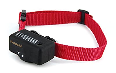 PetSafe Basic Bark Control Collar for Dogs 8 lb. and Up, Anti-Bark Training Device, Waterproof, Static Correction, Canine by Training and Bark