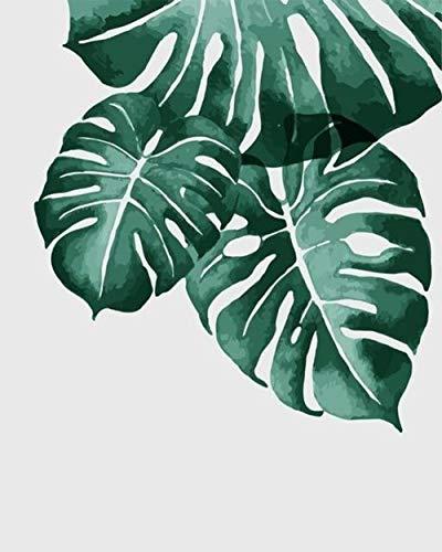 mnbhj DIY Pintura Pintar por Numeros Kits Colorear por Números para Adultos Niños Principiantes Mural Decoración Hogareña 40*50Cm Fotos De Hojas Verdes(Sin Marco)
