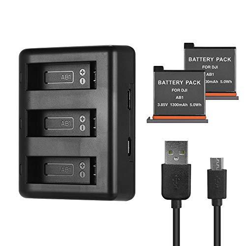 Caricabatterie con 2 Batterie da 1300 mAh, Caricatore USB compatible con DJI OSMO Action Camera