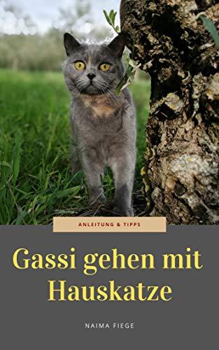 Gassi gehen mit Hauskatze: Anleitung und Tipps
