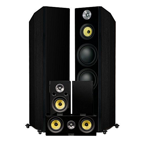 Fluance Signature HiFi Surround Sound Home Theater 5.0 Channel Speaker System Including 3-Way Floorstanding Towers, Center Channel and Rear Surround Speakers - Black Ash (HFHTB)