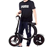 NB.ROSE 2019 Lightweight Fully Folding Lithium Battery Foldable Electric Bike/Mini Bicycle/Foldable Ebike 500W -36V Lithium Ion...