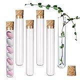 KINDPMA 20Pcs Tubos de Ensayo Plástico 18ML Tubo Ensayo Transparentes con Tapones de Corcho para Boda Arroz Sal de Baño Especias Regalos 18 x 105 MM