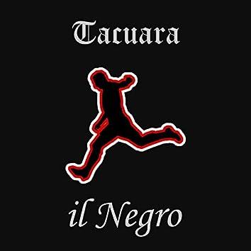 Tacuara