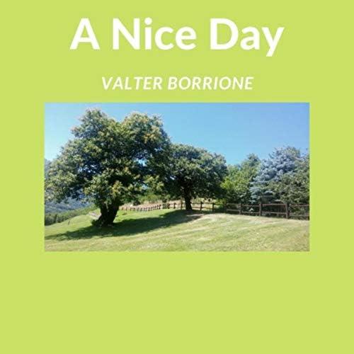 Valter Borrione