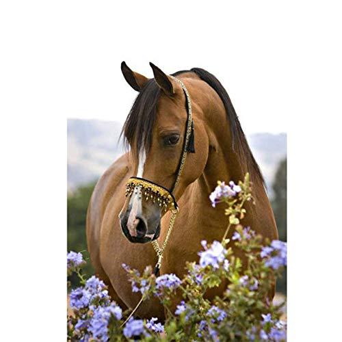 Skryuie 5D Diamantgemälde mit violetten Blumen und Pferden für Erwachsene, Strasssteine zum Selbermachen, mit Diamanten, 30,5 x 40,6 cm
